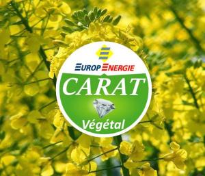 logo énergie végétale carat végétal combustible liquide de chauffage végétal